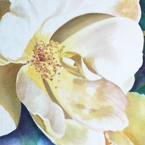 Mondrian's Bloom