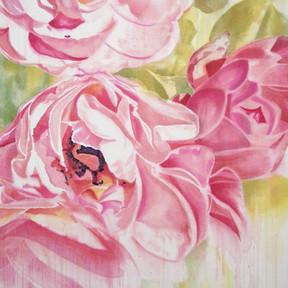 Margaret's Roses