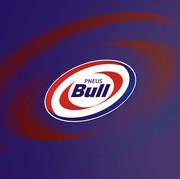 Outodoor Bull Pneus