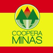 Identidade Visual Programa Estadual Coopera Minas