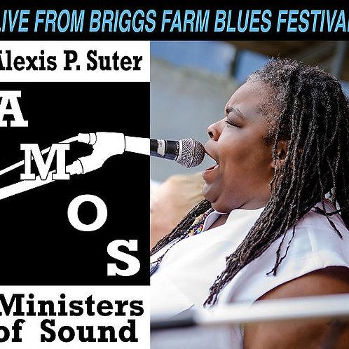 AMOS - Live From Briggs Farm Blues Festival