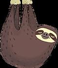 sloth.png