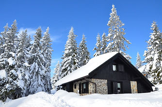 rogla skiing rent snowboarding cottage bungalow