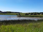 Umgebungsbild Teich.jpeg