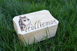 Halliemae's jewlry box