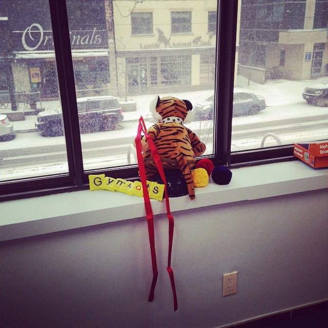 Instagram - Kitty Cartwheel is enjoying some of our new toys and the snowstorm #