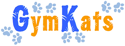 GymKats | Play, learn gymnastics and be active in Leaside Toronto, classes for toddlers, preschoolers, school-age children