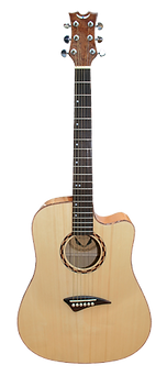Guitar