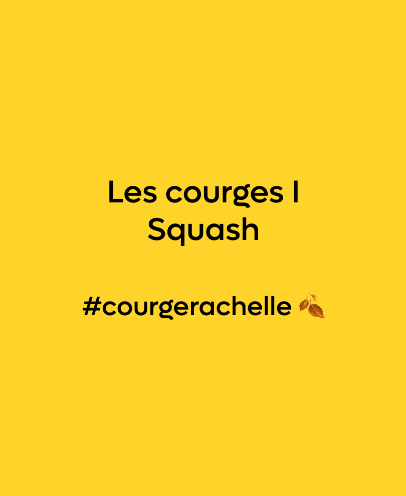 Courge #courgerachelle 🍂