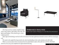 ambiance poster 2 11 x 8.5