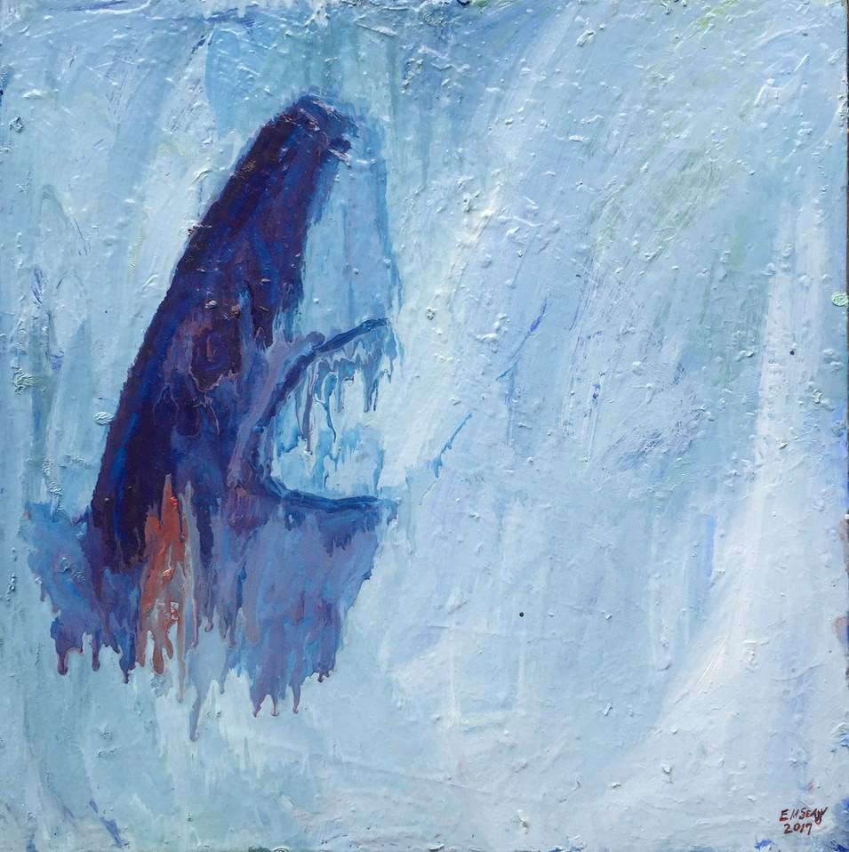 Shark Oil on Birch 24 x 24 2017