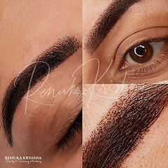 Ombre powder brows renuka krishna india