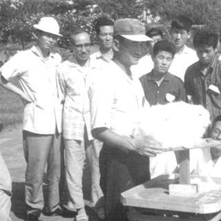 차남 김범일의 토끼털 깎기 강의(1962년)