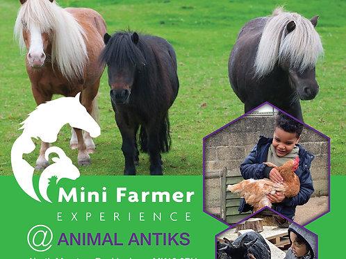 Mini Farmer experience