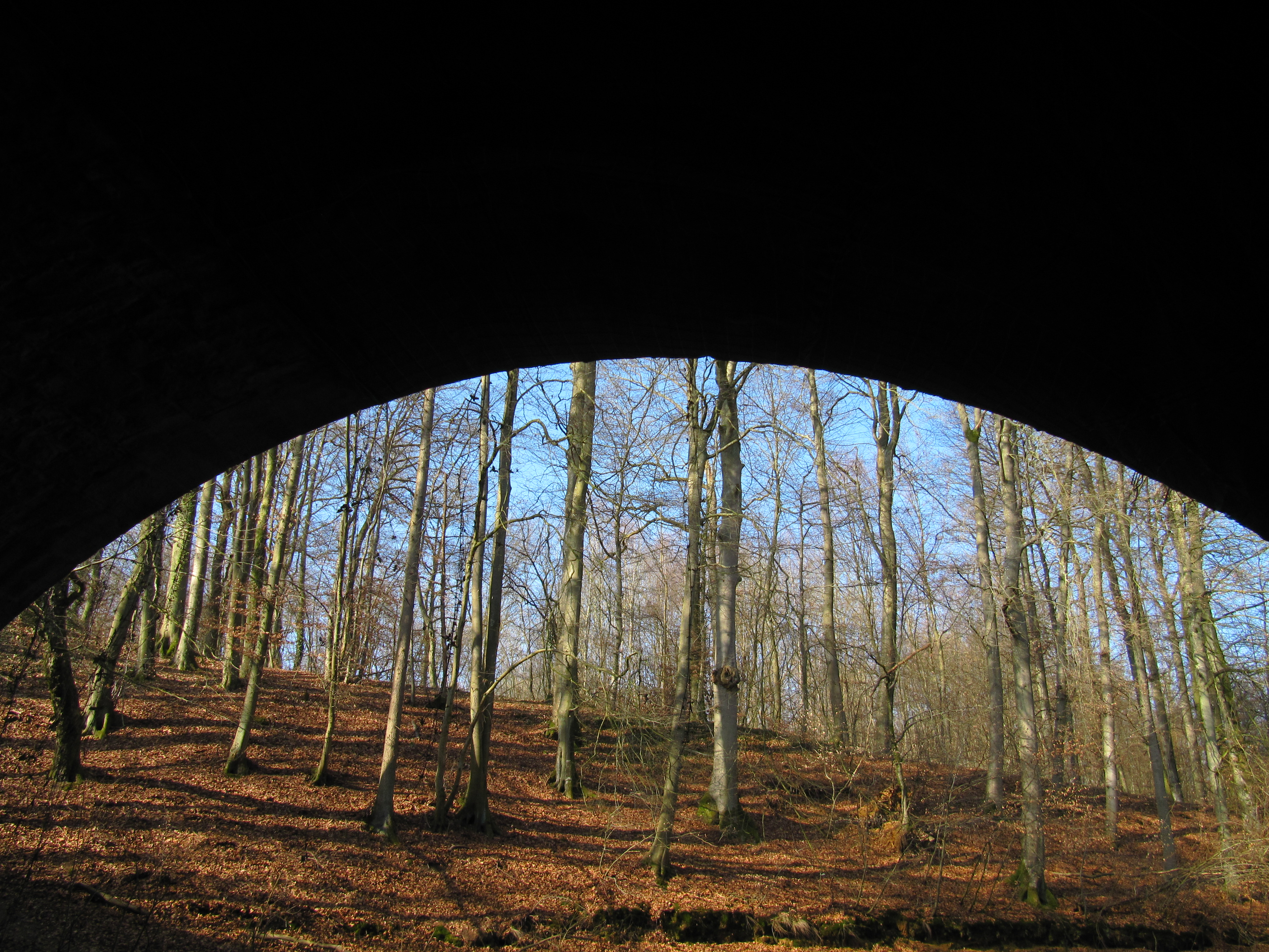 March 6, 2011 tunnel vision