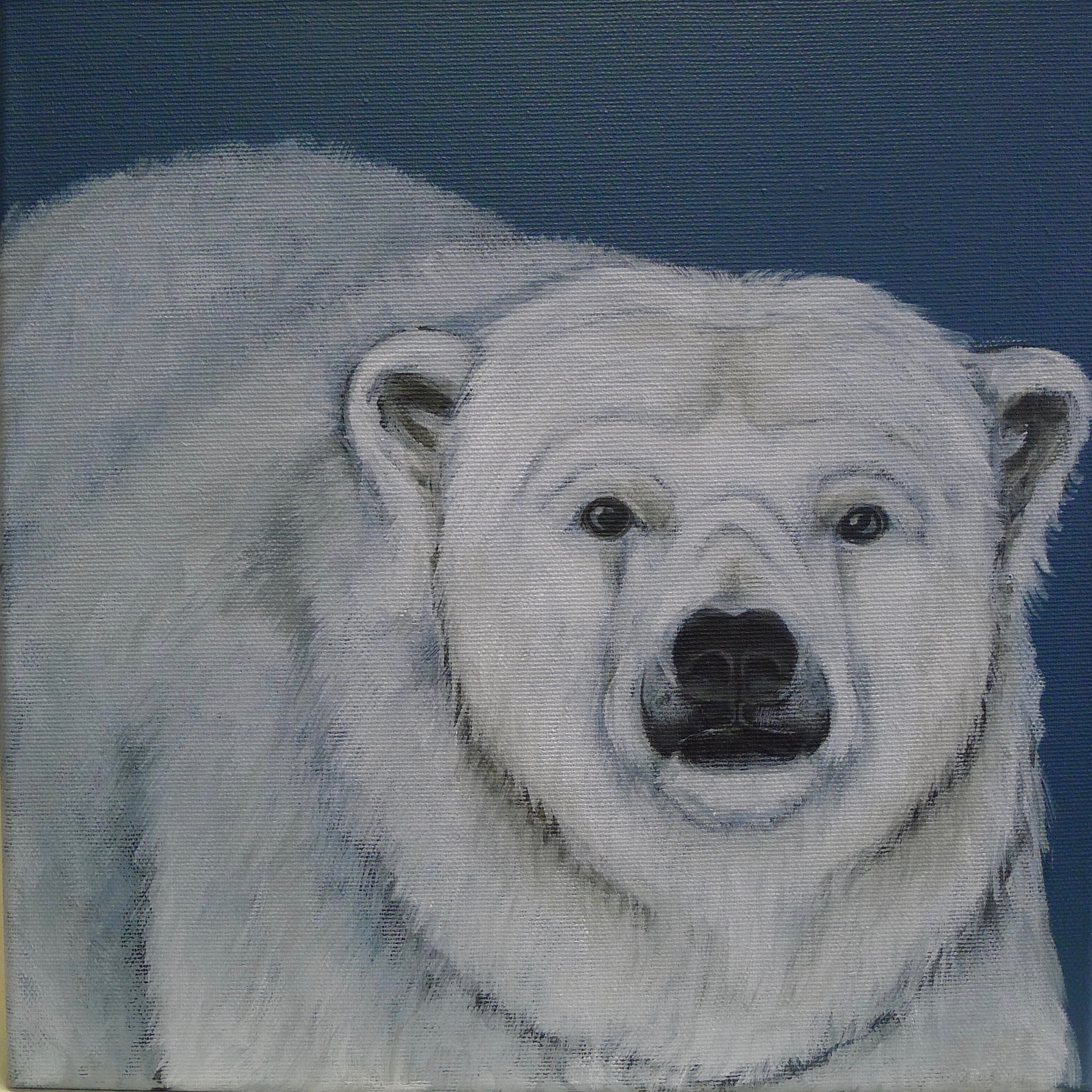 The Ice Bear