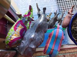 Rhina with rhinos