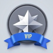 VIP Services and Support