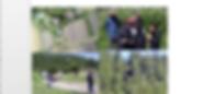 Screen Shot 2019-08-09 at 2_edited.png