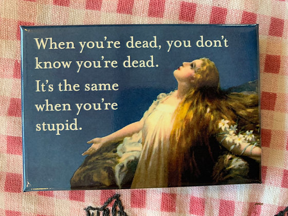 Dead Stupid Magnet