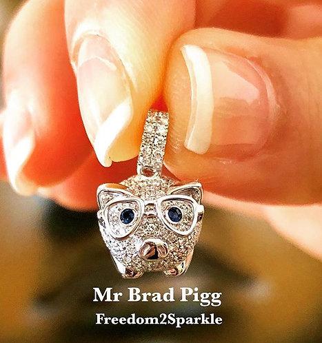 Mr Brad Pigg