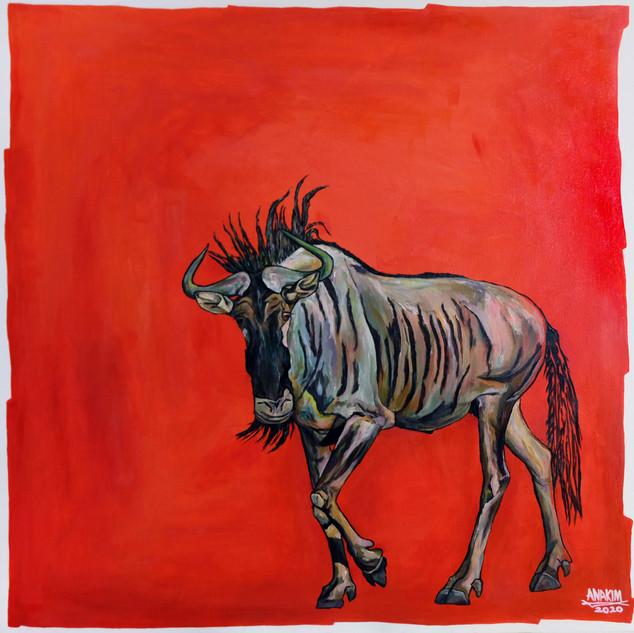 Blue Wildebeest, 2020