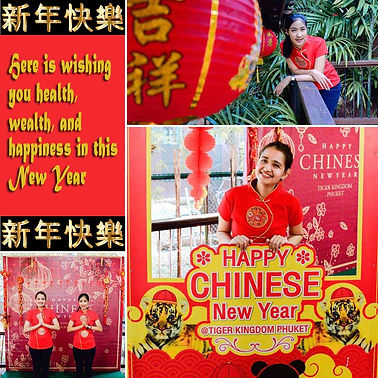 Happy Chinese New Year from Tiger Kingdom