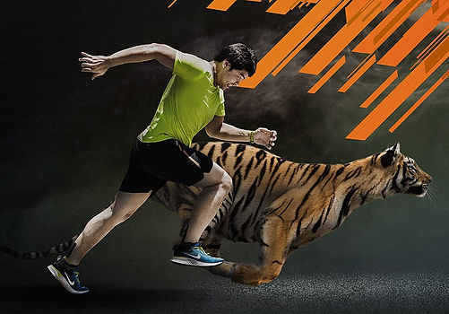 Run Wild For Tigers at Tiger Kingdom Mae Rim Chiang Mai