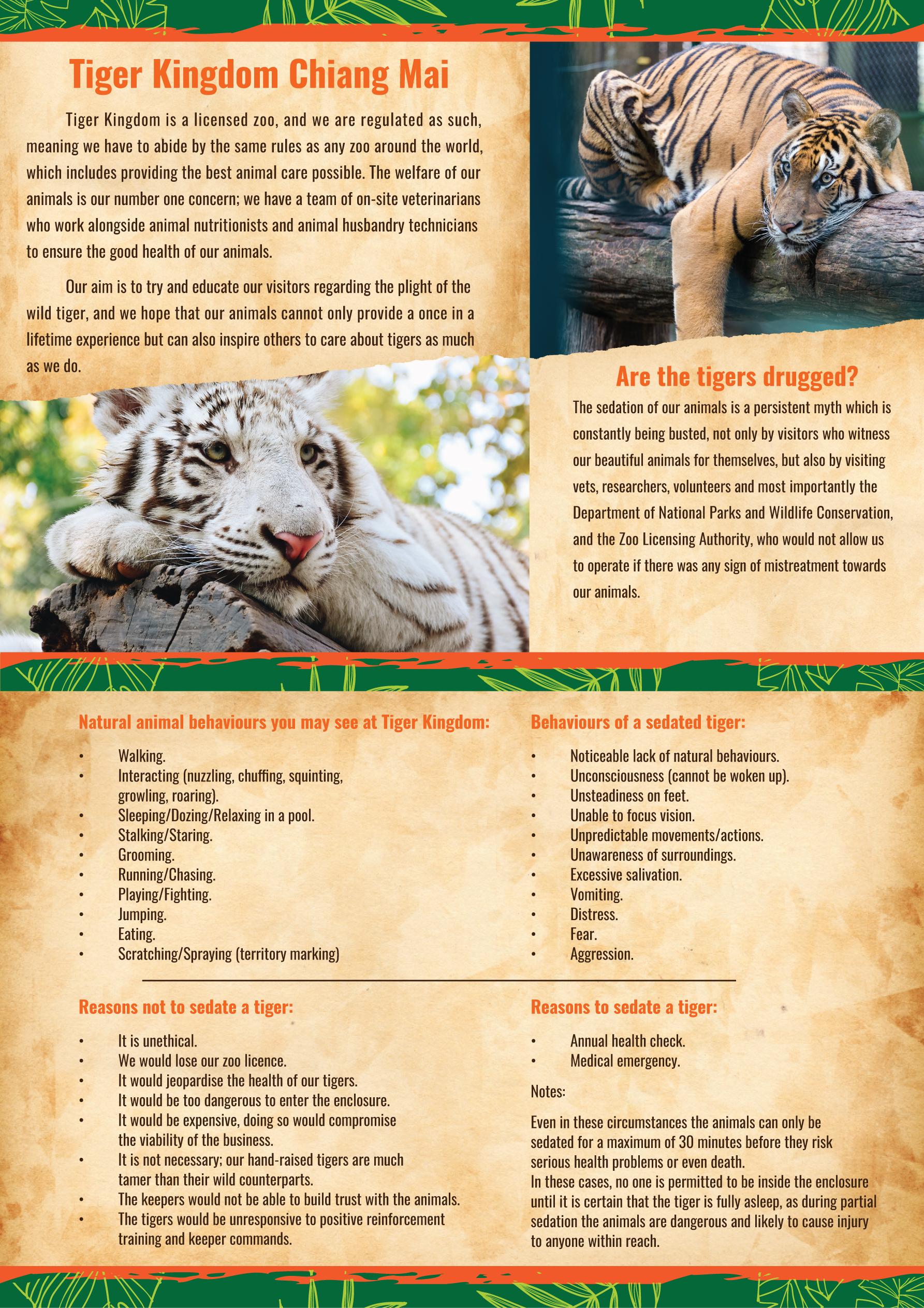 FAQ | Tiger Kingdom Thailand