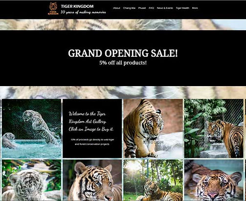 Tiger Kindom Art Gallery webpage screenshot