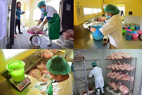 Tiger Nutrition Management at Tiger Kingdom Thailand