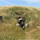 Bjørn outside a megalithic tomb on a hike at Møn, Denmark June 2020