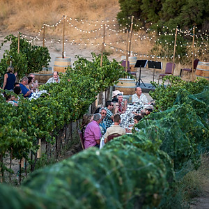 Dine In The Vines - Eberle Winery