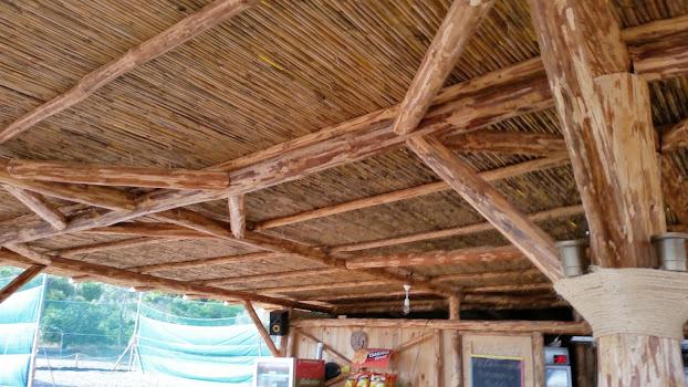Λεπτομέρεια από στέγη καλαμωτής