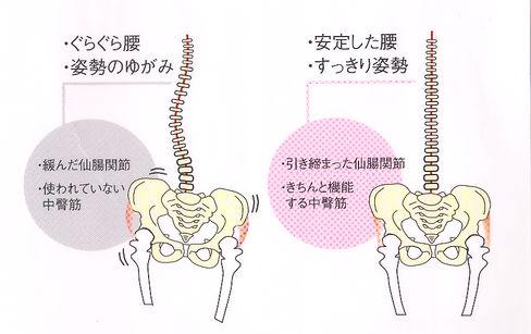 腰痛の原因 あおぞら整骨院