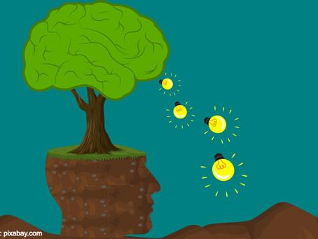 Será que você sabe o que é uma mutação sustentável?