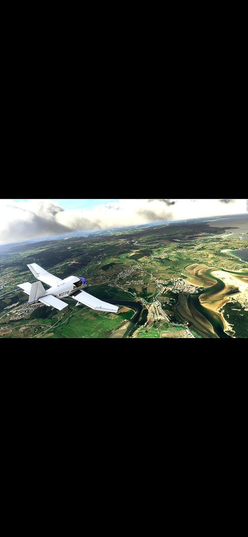 Flight Simulator 1 Hour
