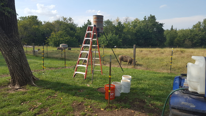 I used hot-wire to fence off a feeder to feed poultry and goats at the same time. It would fling out enough feed for the goats to nibble and get some exercise in between milking while letting the poultry easily slip under the hot-wire fence for feed.
