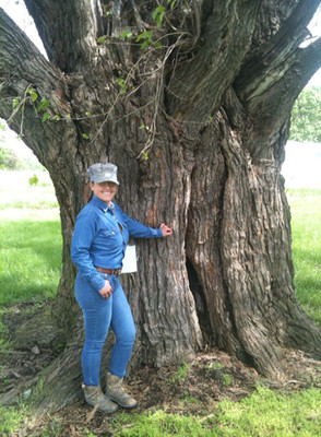 I bought a new shirt and hat to hide my messy hair before meeting our real estate agent. We had time to pose at a tree in the gas station parking lot that, at the time, was said to be the biggest mulberry tree in the state of Kansas. The argument later surfaced that it was a group of several mulberry trees.