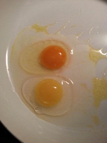 Both of these eggs are from my farm. The difference is that one chicken was broody and rarely left the coop, eating only grain.   The other chicken foraged for grass, weeds, and bugs.