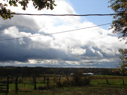 Skies clearning way for a beautiful Sunday. The neighbor's dog kennels in the distance are quiet.