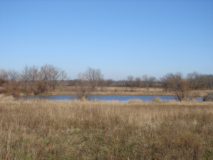 One of three ponds far out in the middle of the 40-acre plot that we walked around while discussing land management.