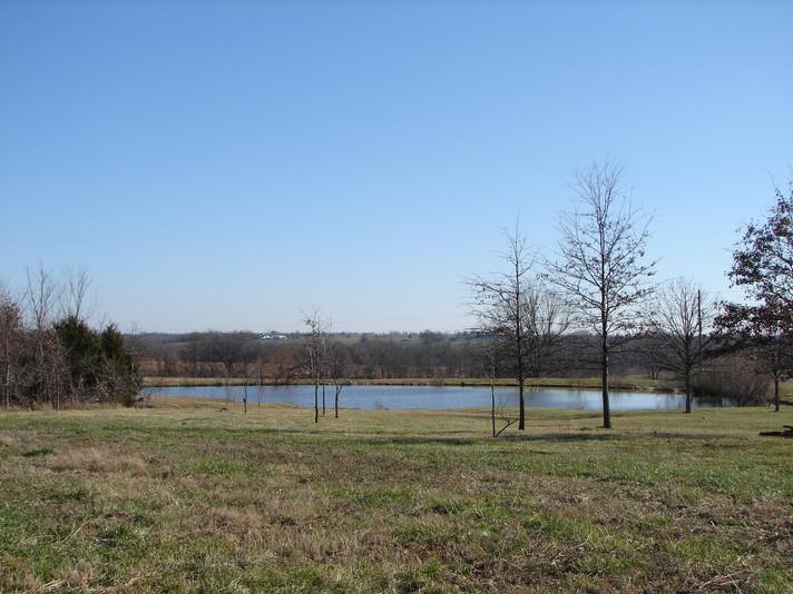 The pond near the house.