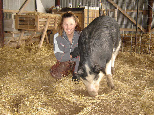 Dee-Dee the sow wasn't much different than the pot-belly pig I had as a kid.