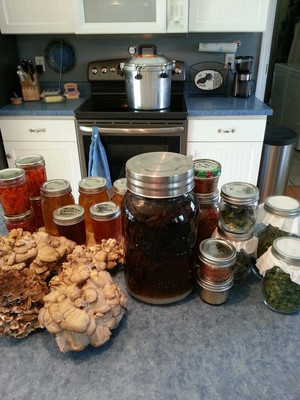 Fall means rounding up odds and ends, drying herbs, wild mushrooms, and peppers for seasonings. I am also making a homemade Kaluaha from organic home-roasted coffee. A cocktail served hot or cold on a hard winter night is cozy by the fire with coffee liquor, fresh goat milk, and goat cream.