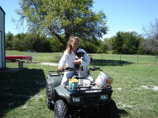 Ronnie bought me an UTV to help me get around since I couldn't walk very far.  Training the pup took a lot of time and patience, but eventually, she learned what farm life was all about had a loving desire to help with everything I did.