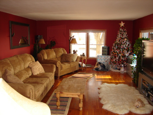 The living room was warm and ready for showing.