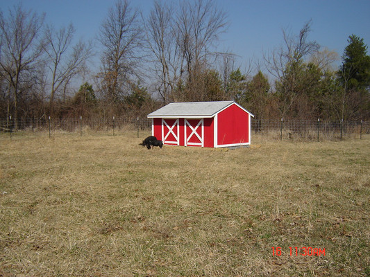 Finest hog house ever!