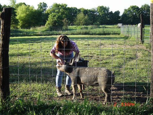 Raising a pig as a lesson in child care when I was younger taught me a lot about pig behavior.