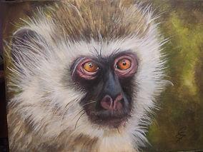 young monkey.jpg
